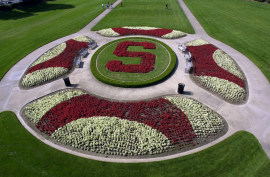 Oval Stanford flowers image, courtesy of Stanford News Service